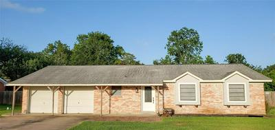 2671 COUNTY ROAD 769A, Brazoria, TX 77422 - Photo 1