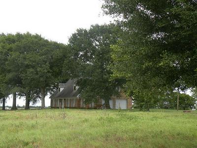 7392 THELDICK LN, Bleiblerville, TX 78931 - Photo 1
