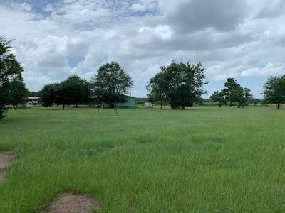 TBD WOODLAND LAKES COURT, Hempstead, TX 77445 - Photo 2