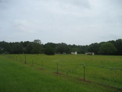 2029 W STATE HIGHWAY 294, Elkhart, TX 75839 - Photo 2