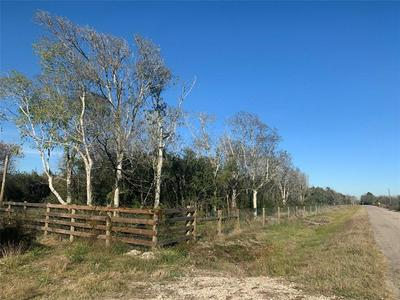 7782 COUNTY ROAD 203, Liverpool, TX 77577 - Photo 2