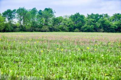 0 FM 1736 ROAD, HEMPSTEAD, TX 77445 - Photo 2