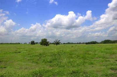 LOT 16/A REAGANS WAY, NAVASOTA, TX 77868 - Photo 1