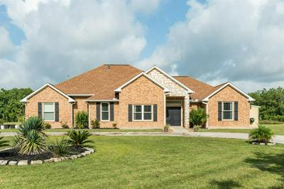 4302 COUNTY ROAD 203, Liverpool, TX 77577 - Photo 1