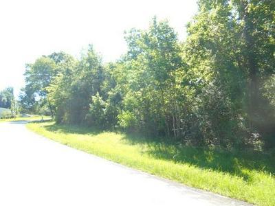 0 COUNTY ROAD 2092, Hardin, TX 77561 - Photo 2