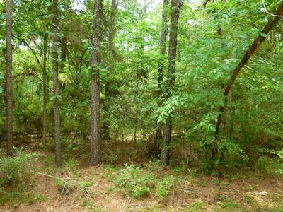 69 SUNNY HILL DR, Coldspring, TX 77331 - Photo 2