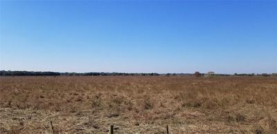 00 COUNTY ROAD 210, Danbury, TX 77534 - Photo 2