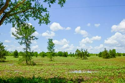 5 COUNTY ROAD 451, Waelder, TX 78959 - Photo 2