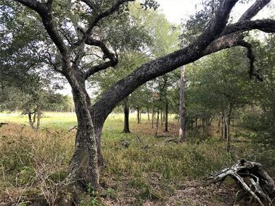 0 SANDY CREEK, Garwood, TX 77442 - Photo 1