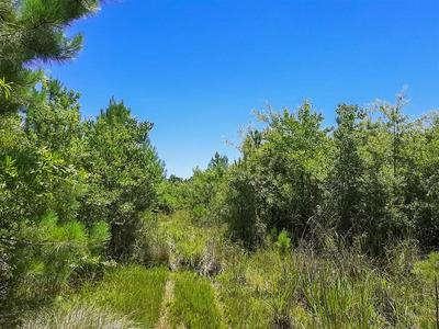 00 PINEWOOD FOREST, Devers, TX 77538 - Photo 2