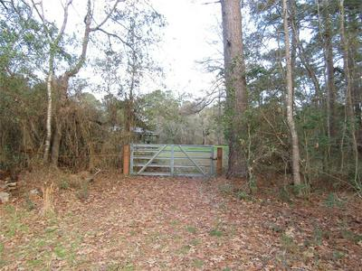 1106 COUNTY RD 2375 PUMP ST ROAD, Chester, TX 75936 - Photo 2