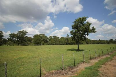 000 SPARKS ROAD, Boling, TX 77420 - Photo 1