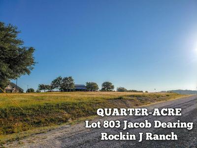 LOT 803 JACOB DEARING, Blanco, TX 78606 - Photo 1