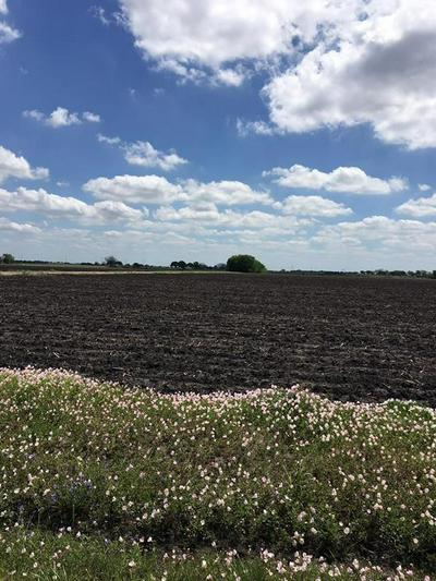 00000 COUFAL ROAD, Wallis, TX 77485 - Photo 1