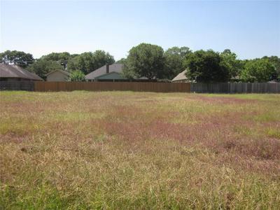 3806 DOVESWOOD CIR, Needville, TX 77461 - Photo 2