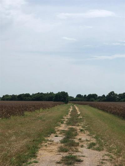 546 FM 360 RD, Beasley, TX 77417 - Photo 2