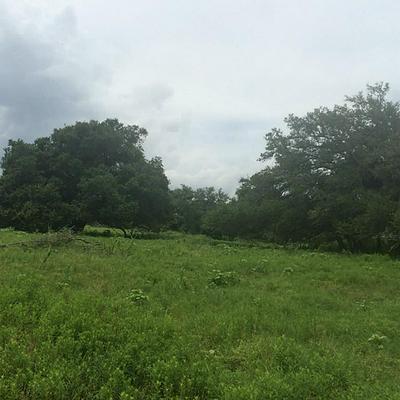 6238 KOVAR RD, Fayetteville, TX 78940 - Photo 1