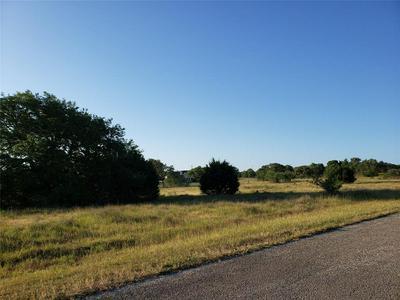 LOT 73 RILEY ROOD, Blanco, TX 78606 - Photo 2