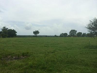 6238 KOVAR RD, Fayetteville, TX 78940 - Photo 2