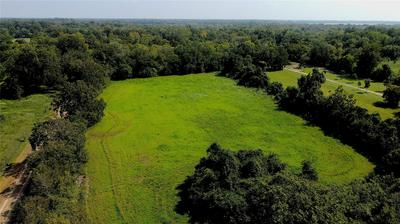 0 COUNTY RD 151, Boling, TX 77420 - Photo 1
