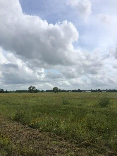 7017 COUNTY ROAD 100, Boling, TX 77420 - Photo 1
