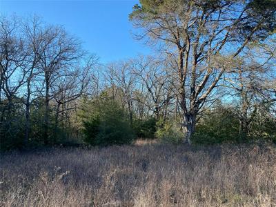 TBD FARM TO MARKET ROAD 3403, Lincoln, TX 78948 - Photo 2