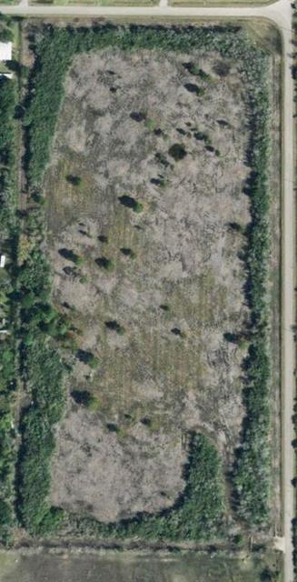 7782 COUNTY ROAD 203, Liverpool, TX 77577 - Photo 1
