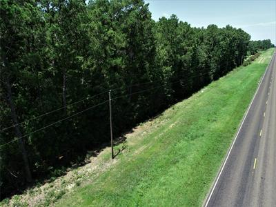 0 SH 287, Pennington, TX 75856 - Photo 2