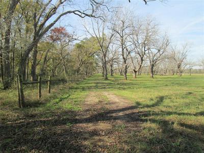 0 YU JONES ROAD, Thompsons, TX 77481 - Photo 1