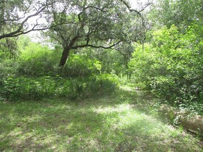 4426 COUNTY ROAD 244, Brazoria, TX 77422 - Photo 2