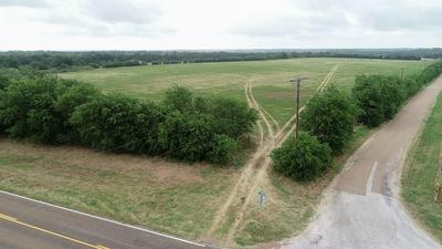 TBD FM 696, Lexington, TX 78947 - Photo 2