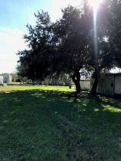 0 FM 616, Blessing, TX 77419 - Photo 2