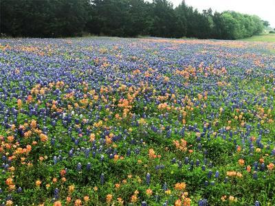 0 CORNER OF MAECKEL RD ROAD, Bleiblerville, TX 78931 - Photo 1