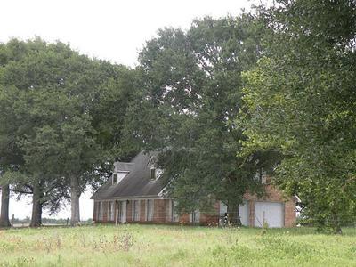 7392 THELDICK LN, Bleiblerville, TX 78931 - Photo 2
