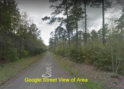0 COUNTY RD 2582, Shelbyville, TX 75973 - Photo 2