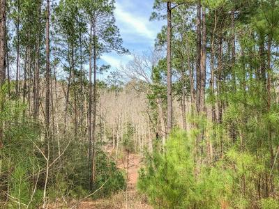 0 OFF FIRE TOWER ROAD, Newton, TX 75966 - Photo 2