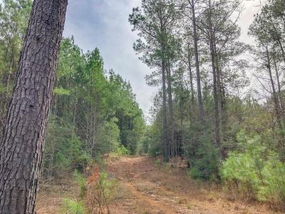 0 OFF FIRE TOWER ROAD, Newton, TX 75966 - Photo 1