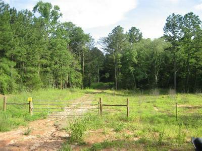 0 COUNTY RD 1850, Grapeland, TX 75844 - Photo 1