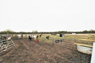 0 CR 103, Boling, TX 77420 - Photo 1