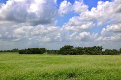 LOT 12 REAGANS WAY, NAVASOTA, TX 77868 - Photo 2