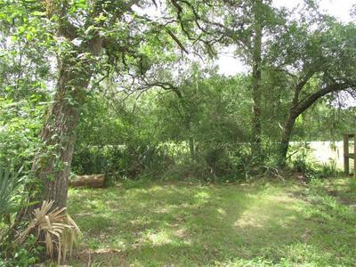 4426 COUNTY ROAD 244, Brazoria, TX 77422 - Photo 1
