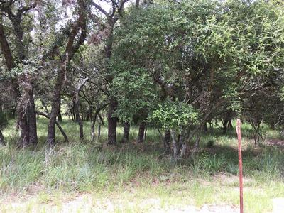 0 BLUEBONNET BEND, Sheridan, TX 77475 - Photo 2