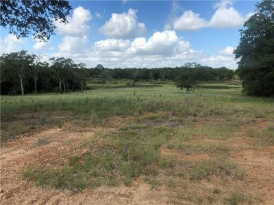 TBD OLD PIN OAK, Paige, TX 78659 - Photo 1