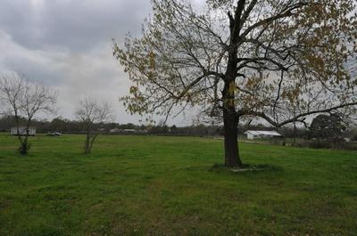 182 ODESSA DR, Trinity, TX 75862 - Photo 1