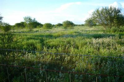 000 RICHARD FREY RD ROAD, HEMPSTEAD, TX 77445 - Photo 2