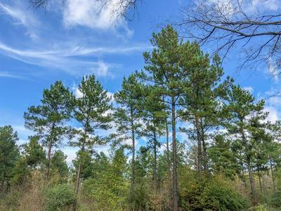 0 CR 1412, Jacksonville, TX 75766 - Photo 2