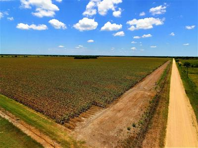 TRACT 2 CR 390, El Campo, TX 77437 - Photo 2