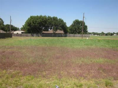 9411 HIGHLAND POINTE DR, Needville, TX 77461 - Photo 2