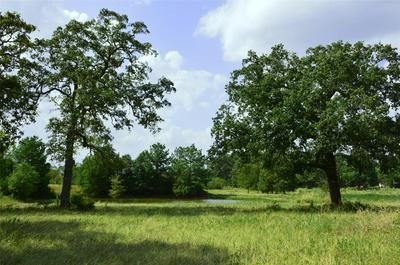 0030 HIGHWAY 90 N HIGHWAY, Bedias, TX 77831 - Photo 1