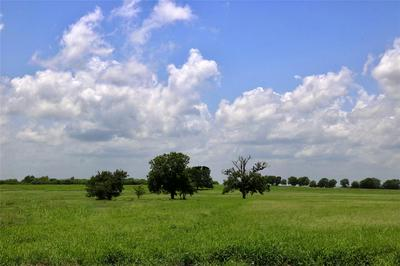 LOT 16/A REAGANS WAY, NAVASOTA, TX 77868 - Photo 2